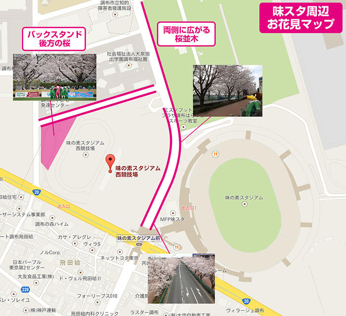20140329sakuramap.jpg