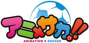 anisoccer_logo.jpg