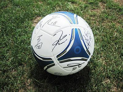 2012vmp_ball.jpg